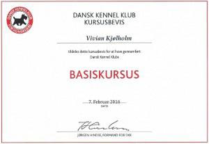 DKK_basiskursus