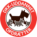 DKK_uddannet_op