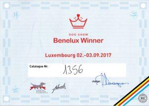 Benelux Winner 2017